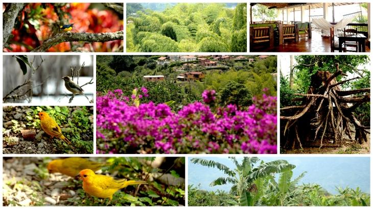 colombia-hacienda