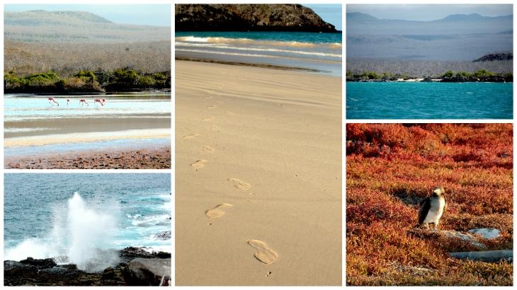 galapagos-landscape1