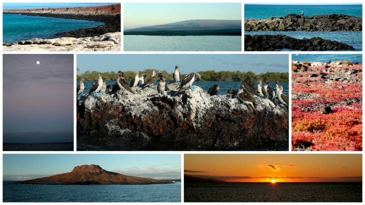 galapagos-landscape2