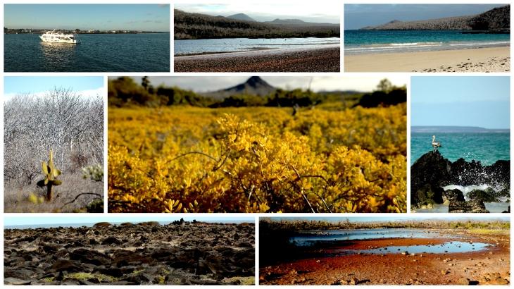 galapagos-landscape3