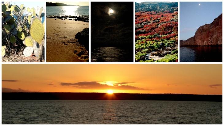galapagos-landscape7