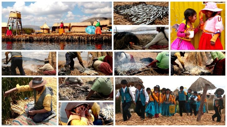 titicaca-life