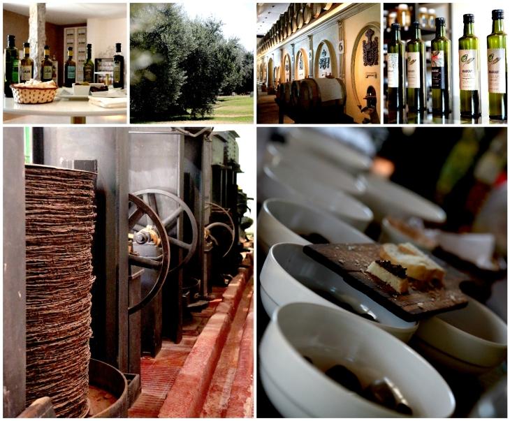 mendoza-olive-oil-tasting
