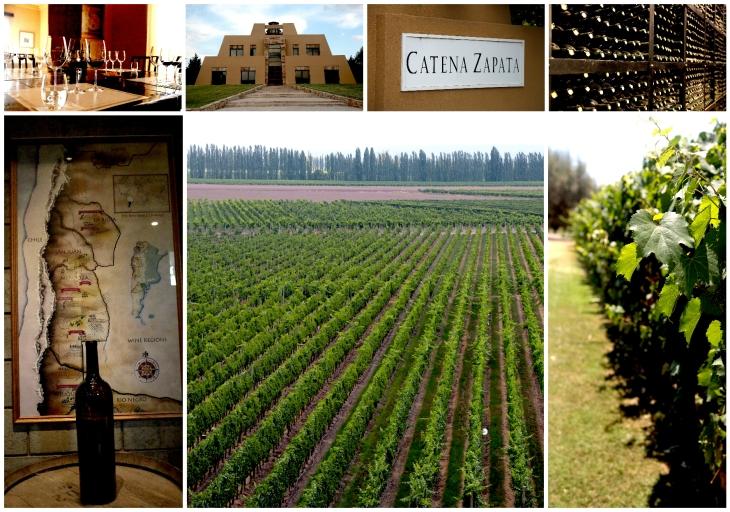 mendoza-wines-1